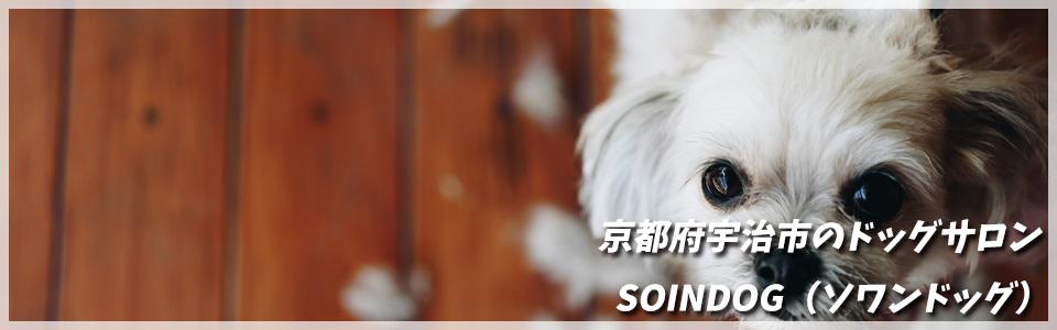 京都府宇治市のドッグサロン / ペットサロン/トリミング